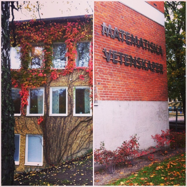 Outono no campus